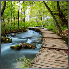 """Nielsen Gerahmtes Bild """"Forest"""" 30,0 x 30,0 cm"""
